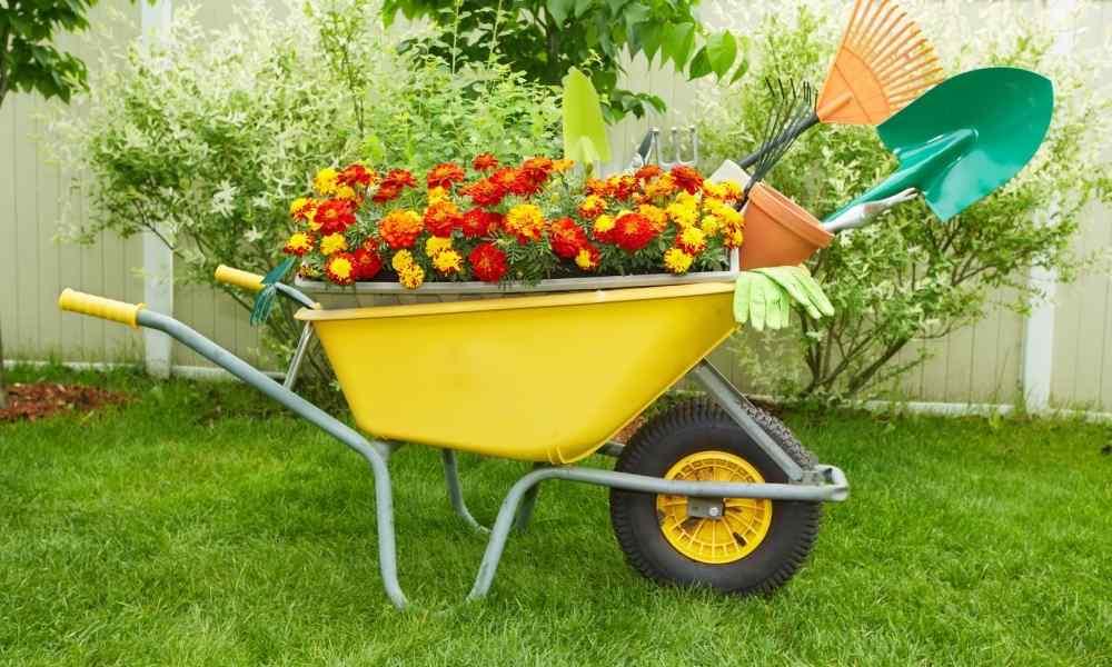 Landscaping Design 101