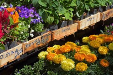 Tips on Buying Landscaping Supplies