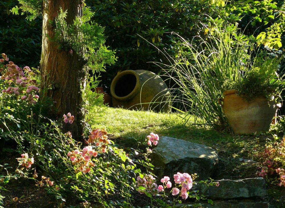 beautiful garden landscape
