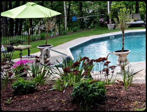 lanscaped-backyard-design