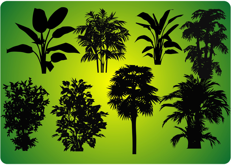 various plant forms
